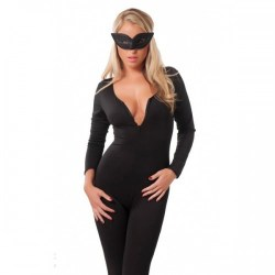 Catwoman_Outfit_4bebd321a906d.jpg